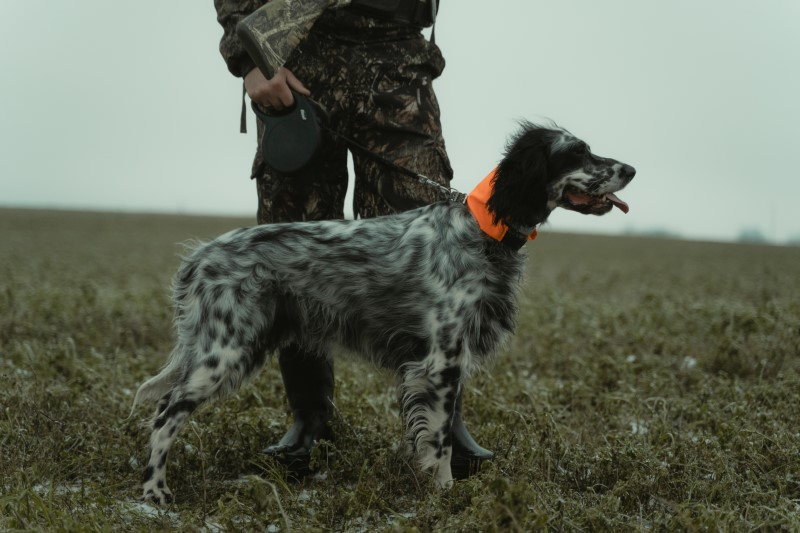 Jagdbekleidung - Jagdhosen